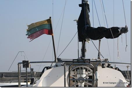 Lithuania_flag_[arbusis.lt]
