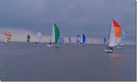 2011 sail www.arbusis.lt (2)